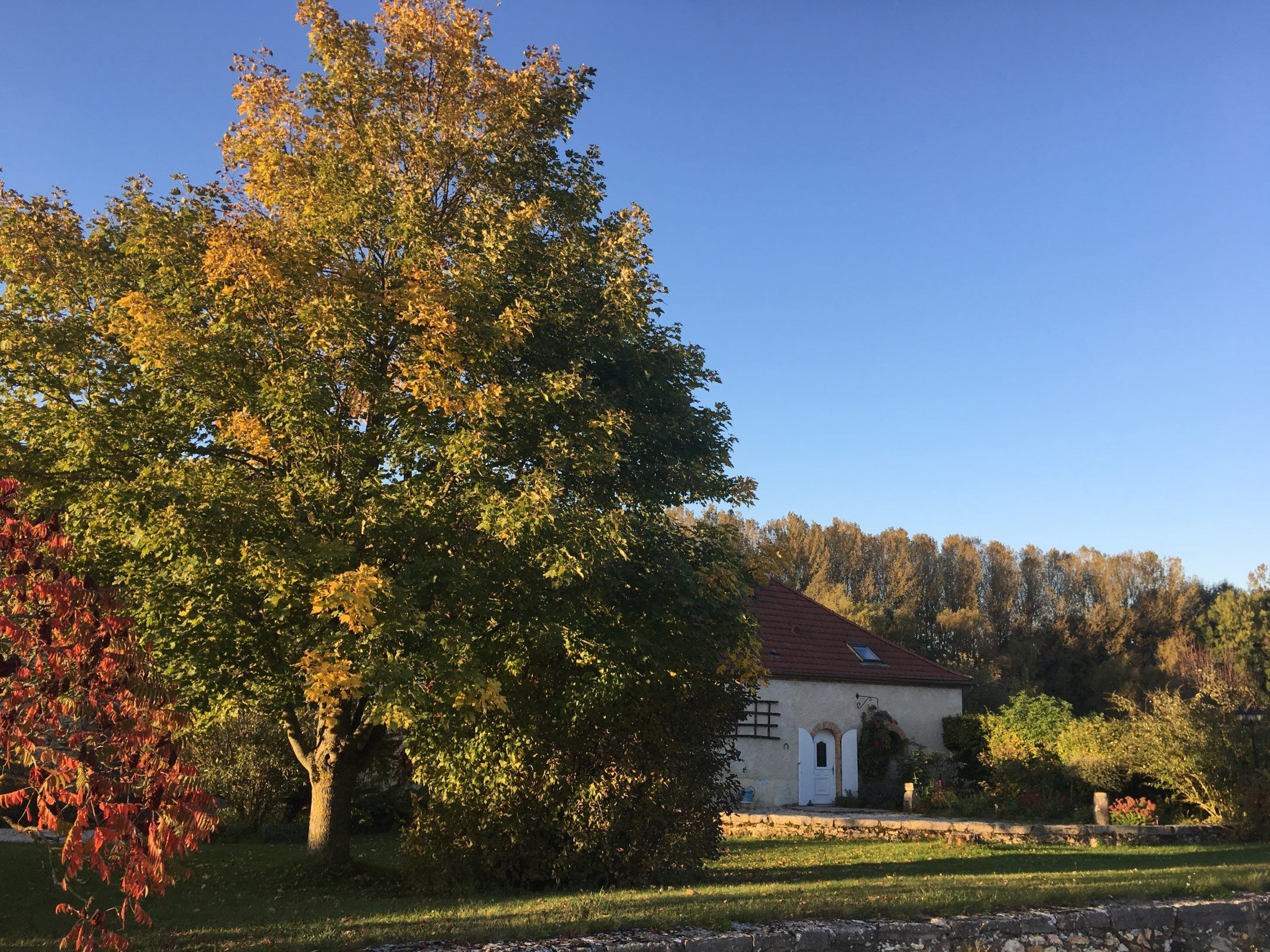 Zuhause - Au Beau Sarrazin
